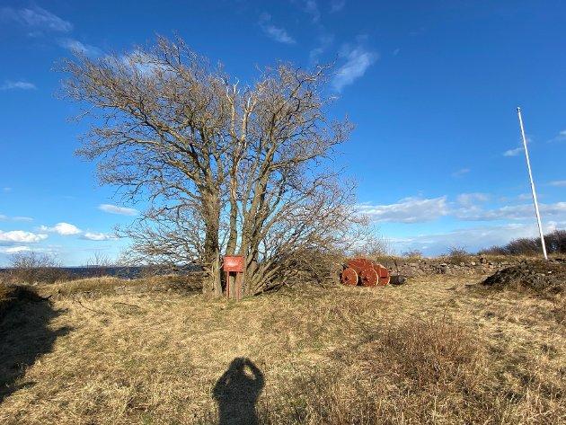 FRA NAPOLEONSTIDEN: Ytterst på Vallø ligger restene av Prinds Christians Batterie, et forsvarsverk som skulle forsvare Vallø Saltverk og innseilingen til Tønsberg.