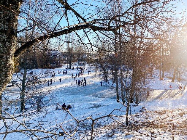 FULL FART: I Rosahaugen var det mange som koste seg med snø og sol i helgen.