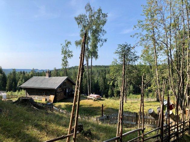 Kulturarv: – I 2007 ratifiserte Noreg Unesco-konvensjonen om immateriell kulturarv. Med den tok Noreg på seg å sikre livsvilkåra for meir enn bygningsarven og den materielle kulturarven. På Skålbergsetra har dei ei fin tilnærming til den immaterielle kulturarven. Her har vi andre mykje å lære, skriv Ole Aastad Bråten.
