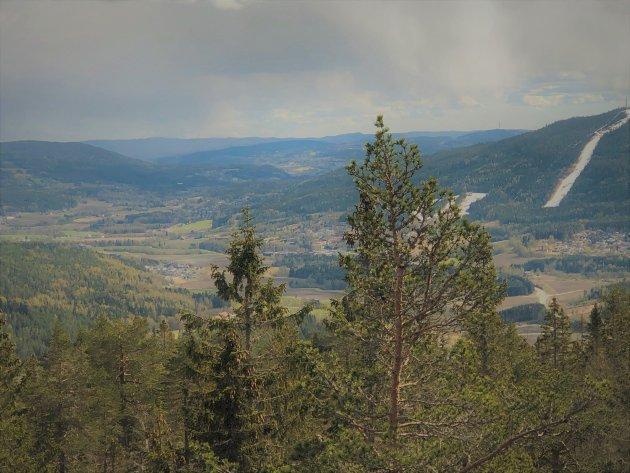 INGEN VEIUTBYGGING: Vi vil bevare vår grønne dal - for innbyggere og etterkommere, skriver Marit Hoff, Vidar Myhre og Anne Hilde Røsvik fra MDG.