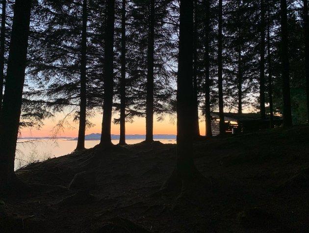SOLNEDGANG: Kveldsutsikt fra skogen ved Ådnahove. En 20 minutters gåtur fra parkeringsplassen ved Tøgjevågen.