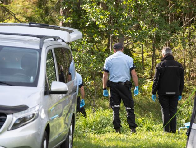 Søndag morgen ble en person funnet livløs på campingplassen ved Sand Marina på Hvaler. Søndag formiddag mistenkte politiet ikke at det skal ha skjedd noe kriminelt, men gjennomførte avhør på stedet. De opplyste også at det vil bli gjennomført flere avhør på politihuset på Grålum iløpet av søndagen.