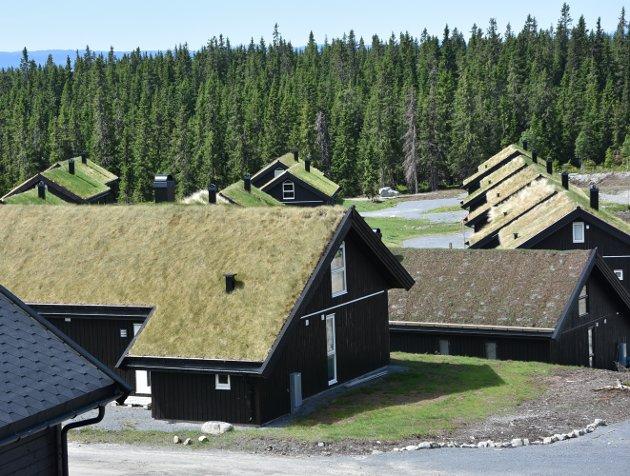 TETT OG DYPT: Gutubakken på Sjusjøen er tett utbygd etter at flere meter myrjord ble fjernet.