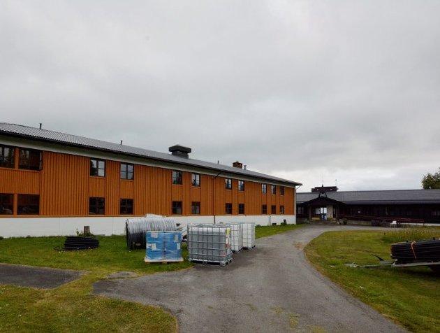 FALLITT: Forslaget om å bruke Sølvskottberget som asylmottak er et tegn på statlig fallitt.Foto: Per Ivar Henriksbø