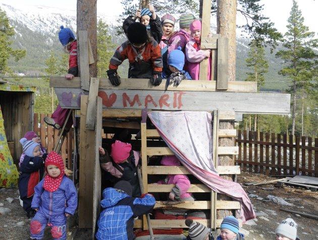 KRAV: Barnehagene i vårt langstrakte land får nå store endringer i sine rammevilkår og krav uten noen som helst kompensasjon, skriver Marit Knutsdatter Strand (Sp). Ill.foto