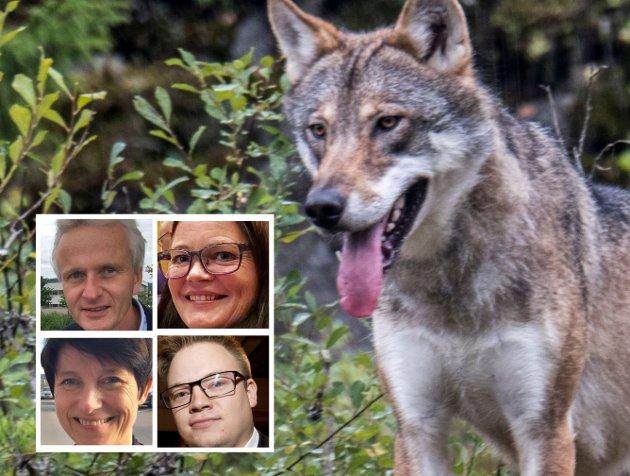Politikk: Hva tenker fylkestoppene Aud Hove, Even A. Hagen og Kari-Anne Jønnes om det prosjektleder Tron Bamrud går inn for?
