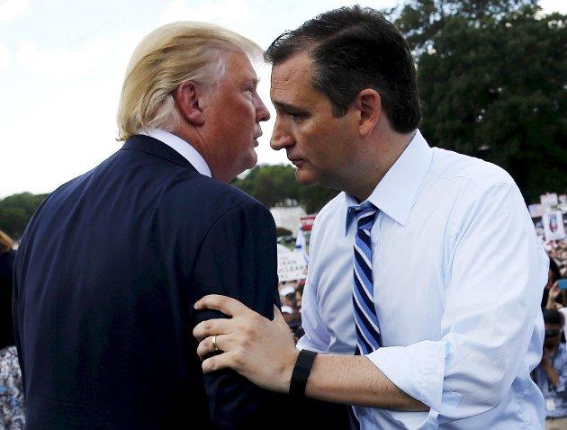LETT MATCH? Både Donald Trump og Ted Cruz er drømmemotstandere for Hillary Clinton og demokratene, skriver kronikkforfatter Steinar Ottesen fra Aurskog-Høland. Foto: NTB scanpix