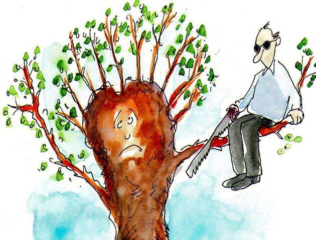 En leser er bekymret for om kapping av trær og røtter kan være til fare for kvikklereras her i distriktet.