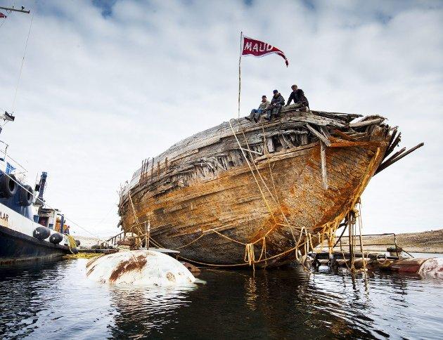 HEVET: Roald Amundsens «Maud» er hevet og neste sommer skal den transporteres til Tofte.
