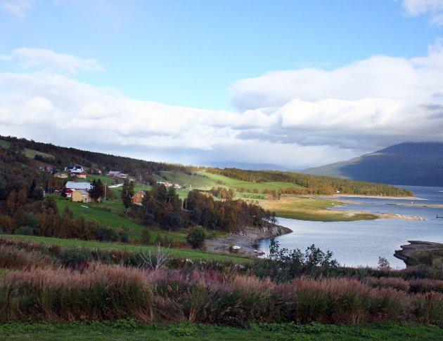 Riktig: Det er riktig som Møllersen hevder, at veien over Bleikvassli er 50 km kortere enn å kjøre via Mosjøen, skriver Torger Nilsen. Foto: Alf Vesterbekkmo