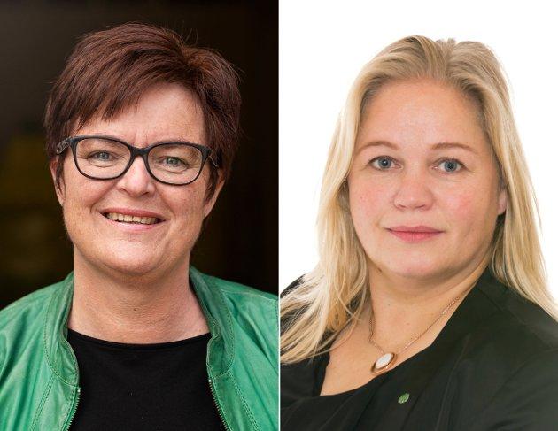 Både Høyre, KrF, Venstre, SV og Ap snakker varmt om å ta hele landet i bruk, og at vi må legge til rette for næringsutvikling i hele landet, også i utkantgrendene. Gjelder dette bare i festtalene, spør Heidi Greni og Kari Anne Bøkestad (Sp).