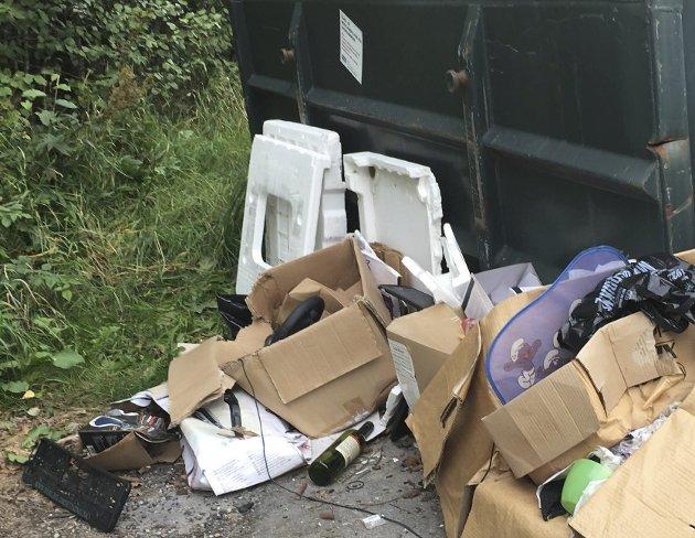 SØPPEL: Det kastes mer enn bare glass og metall ved containerne i Heradsbygda.