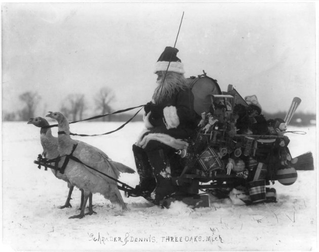 NISSETØYS: Julenissen med pakker på sleden, dratt av to kvite kalkunar. Gamalt julekort frå USA. Library of Congress