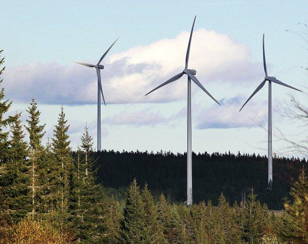 UBALANSE: Karin Leonhardsen mener det er voldsom ubalanse i styrkeforholdet i vindkraftsaker, siden folkemening og hensynet til naturen tilklegges liten vekt.