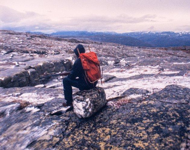 De første planene er i gang. Og denne gang kan en virkelig bekymre seg for villreinen, skriv Jan Gravdal.  Bildet er fra høyden over Botnavatnet og Seljestad.