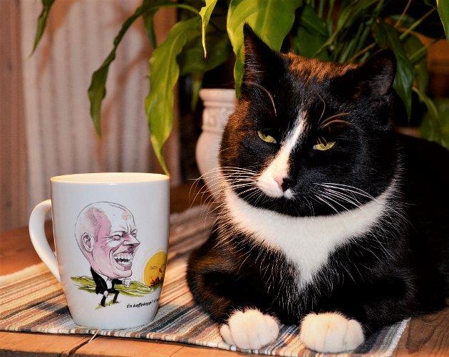 BJARNE: Katta til Olav Nordheim får oppmerksomhet i dagens spalte.