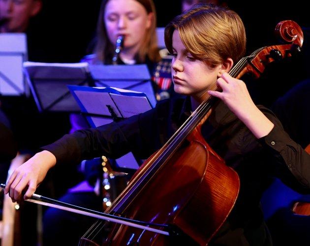 Orkesteret besto av Rana´s eget strykeorkester for barn og unge, Mo skolemusikk og Strykekammeratene. I tillegg er det elever fra kulturskolen, inviterte gjester og instruktører.