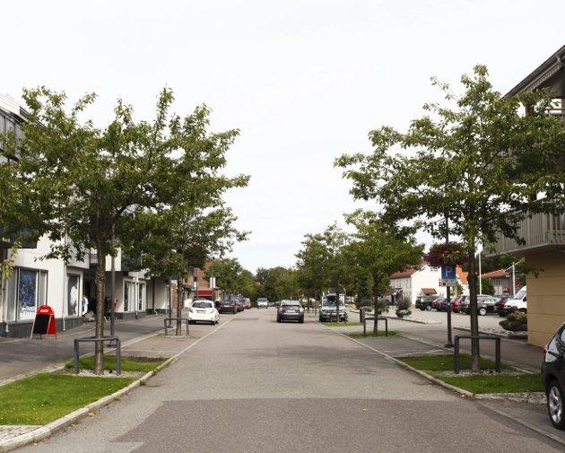 Denne veien, mener kvinnen som bor i Fila, at blir for belastet.