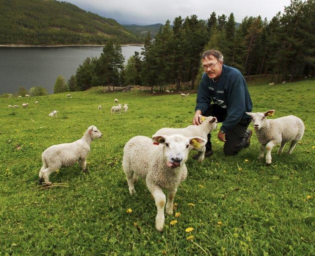 Ole Petter Berget I bonde- og småbrukarlaget.