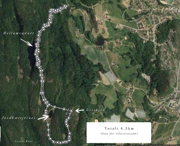 Turkart:  Her vises en skisse av dagens tur, vi gikk til Utsikten først og så videre runden rundt Jordbærtjernet før vi kom inn igjen på stien vi hadde fulgt oppover.  Total lengde på dagens tur var 4,5 km.