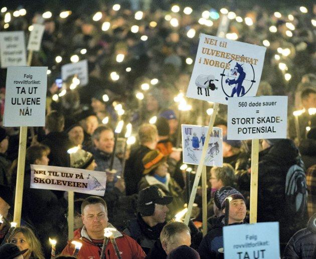 Reprise: Kveldens protestmarsj mot regjeringens rovdyrpolitikk er en reprise på tilsvarende aksjon for to år siden. FOTO: NTB/Scanpix