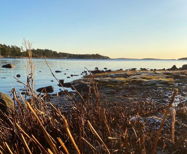 HÅP: Vi har en stor jobb for å redde vår syke fjord, men jobben er ikke uløselig, skriver Svein Åge Lauritzen,  (Ap).