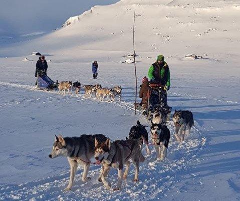 Lars Kristian Günther fra Degernes og hundene leder an. Statsminister Erna Solberg (H) og hennes hundespann for anledningen følger hakk i hæl.