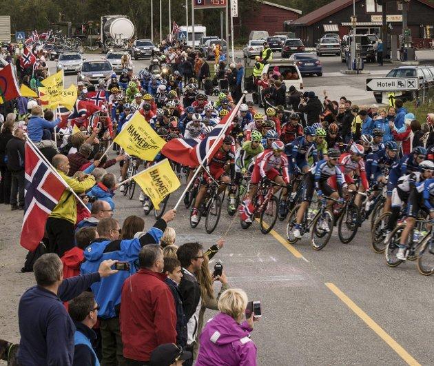 TILBAKE TIL FINNMARK: Arctic Race of Norway var i fjor lagt til Vest-Finnmark. Her er syklistene i Kvalsund. Nærheten til Russland kan bli et argument for å få løpet til Kirkenes i 2017. Foto: Bjørn Egil Jakobsen
