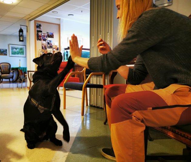 High five!  Toya viser villig frem kunster på Frydenborgsenteret i Risør