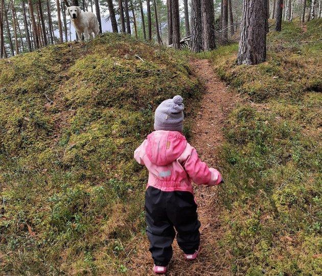 PRIVILEGIUM: Å ha så god tilgang til skogsområde som vi har her på Vestlandet, er inga sjølvfølge. Søndag 21. mars er FNs internasjonale skogdag, og det finst ingen betre måte å feire den på enn å ta seg ein tur i skogen.