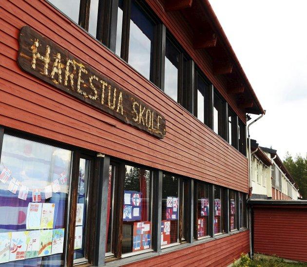 Harestua skole: Går den for lut og kaldt vann, spør Kjell Haga.