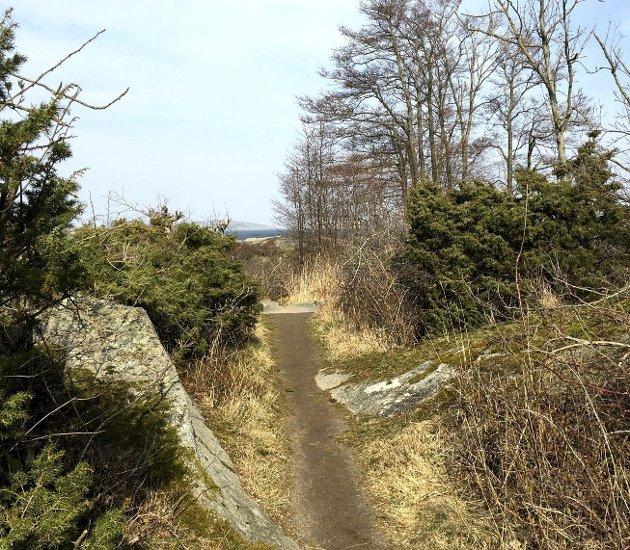 Stien: Leder ned til selve paradiset.