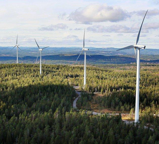 NEI: Innsenderen advarer på det sterkeste mot å slippe til vindmøllebygging på svensk side av Finnskogen.