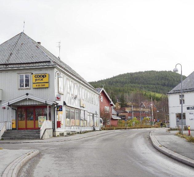 Steia på Alvdal. Arkivfoto: T.H. Løkken