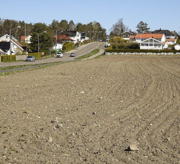Den planlagte utbygging av Kallumjordet.