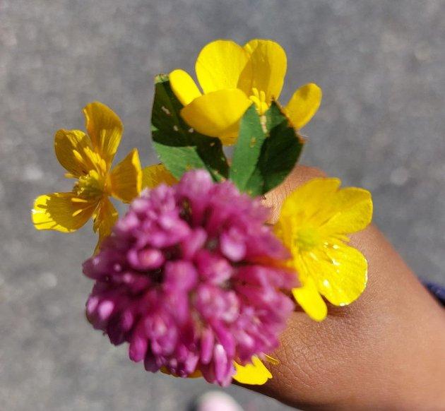 """""""En håndfull blomster"""""""