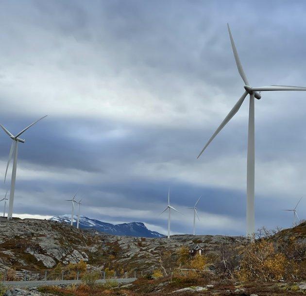 Luftig bakgård: Vindkraft sies å være et av de beste tiltakene vi kan sette inn for å redusere utsliipp. Mange frykter at vindturbinene skal ødelegge naturen i «bakgården» til Narvik, men gjør vi ingenting er det også ødeleggende for naturen. Mer vindkraft i Narvik vil ikke alene snu noe, men det er definitivt et bidrag.foto: Christian S. Andersen