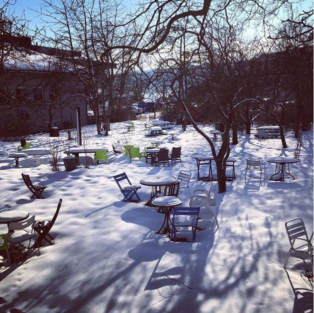 Det er fortsatt vinter i Eplehagen, men nå er stolene i det minste synlige. Bildet er hentet fra #amtaland på Instagram. Følg oss du også.