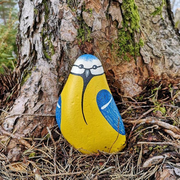 FORM: Det viste seg at det var ei blåmeis inne i denne steinen.