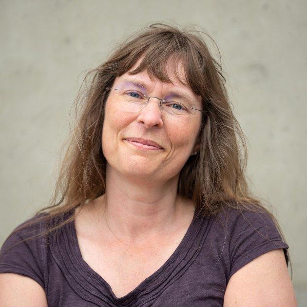 Hanne Stenvaag, Stortingskandidat Rødt Troms