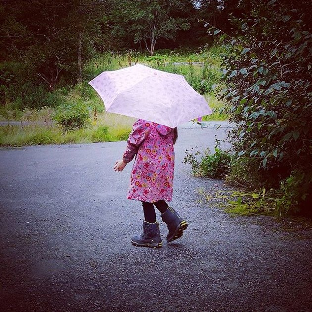 Paraply-jente.
