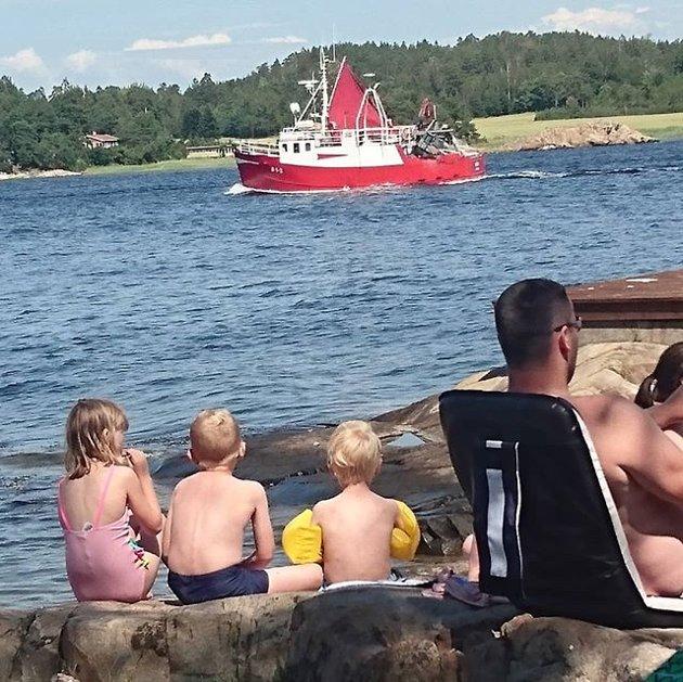 @jorunhugsted: Sommer på Karlsøya #saverden