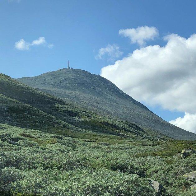 @abelsby #gaustatoppen#utno#saverden#utpåtur#fjell#fjellet#topptur#rjukan#sommer#sol#skyer#familiepåtur#gaustatoppen1883moh