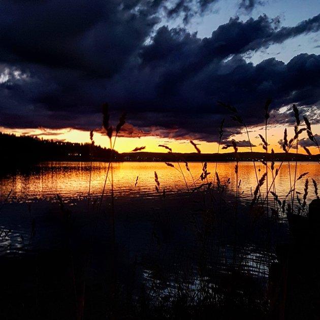 Kaldnes i solnedgang