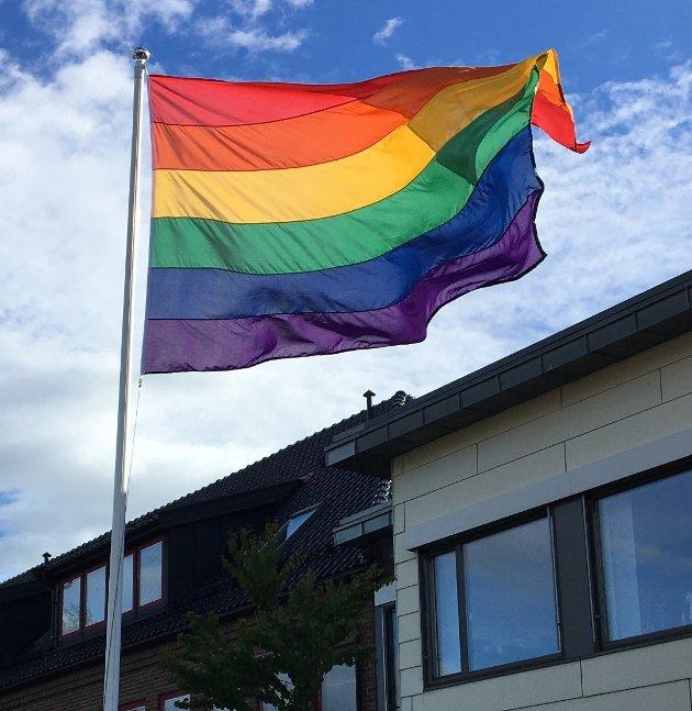 VIKTIG: Er det ikke viktig for Tønsbergs Blad og andre hva heterofile mener, spør Bj. Haave.