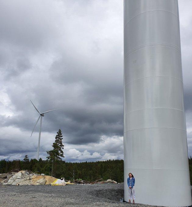 Vindkraftfelt har enorme dimensjoner mot naturen