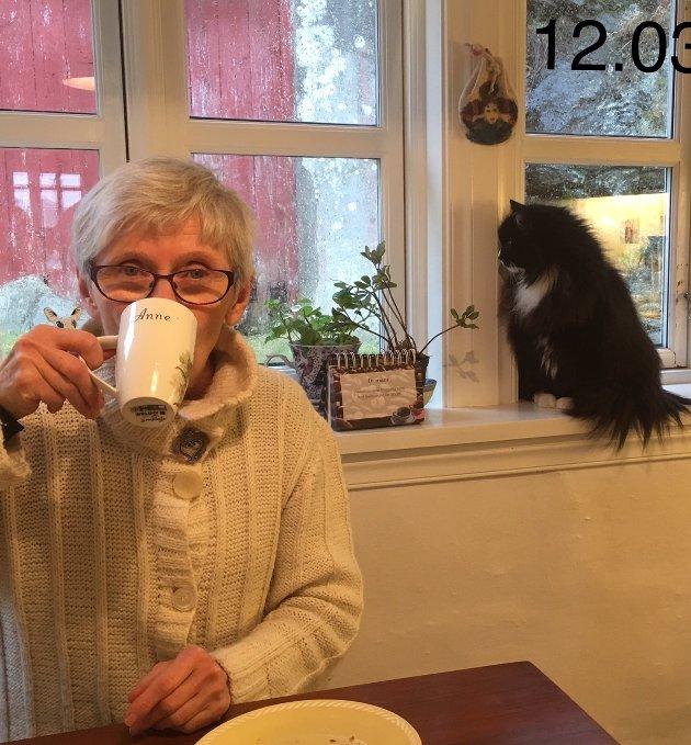 Heimen der også katten lyttar til valsendingane, - eller gir han bare katten?