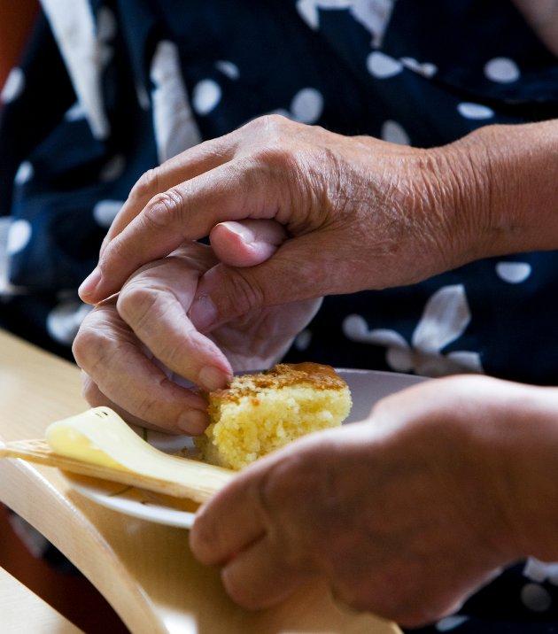 «Dersom vi skal tilby aktiviteter til eldre som har ulike utfordringer og behov, er det helt avgjørende at de frivillige organisasjonene er med på laget. Ikke som en brikke som hentes inn ved behov, men som en viktig aktør som gir et betydelig supplement til eldreomsorgen», skriver Hans Christian Lillehagen, Linda Berg-Heggelund og Lisbet Rugtvedt i dette innlegget. (Illustrasjonsfoto: Gorm Kallestad, NTB Scanpix)