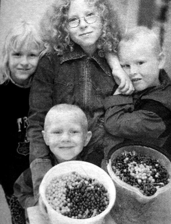 Søskene Sigrid, Marte, Karstein og Olav Johansen var med mamma på blåbærtur. Men ikke all bæra de fant var like blå.  - Det var ei tue med lys bær, fortalte Eva Johansen som  hadde tatt med barna på blåbærtur til Bjørnsand utenfor Tangstad. Den lyse bæra var helt moden, og den smakte som all annen blåbær.
