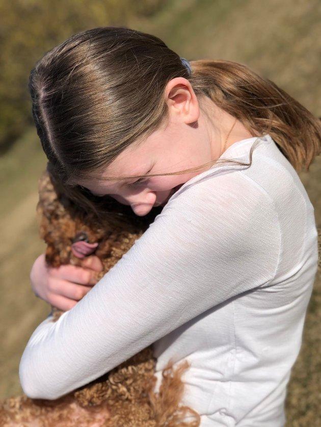 Mye glede og trøst i en hund.